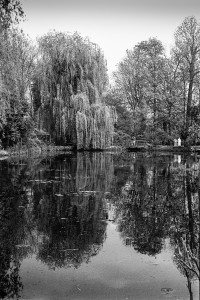 7.Giverny,1990