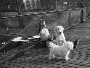 14 Pont des Arts I (2017)