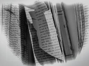 6 livre voile