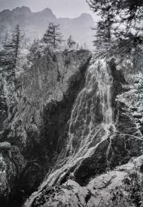 8. La chevelure de Berenice, Alpes de Haute Provence, 1985
